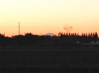 房総半島から望む富士山(その1)。まずは地元の長生村から。これは本郷地区の田んぼで撮ったもの。