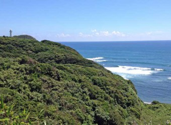 勝浦の海。かつて与謝野晶子が「おお美しい勝浦」と詠んだそうだ。なるほど良く分かる。