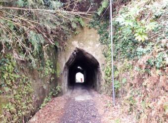 茂原市押日の「素掘り隧道」。この一帯は全国的にも素掘り隧道の多さで知られ、「素掘り隧道マニアの聖地」と呼ばれている。