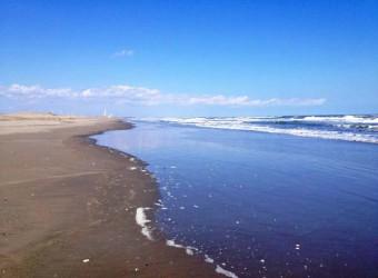 春の九十九里浜。波も穏やか。今日は暖かい。