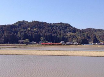 小春日和のいすみ鉄道(その1)。もうじき田植えを控え、田んぼには水が満々に湛えられています。