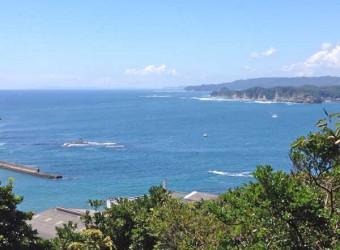 勝浦の海(その2)。海のド真ん中に鳥居が見える。海への信仰があったのだろう。さすが漁師町!