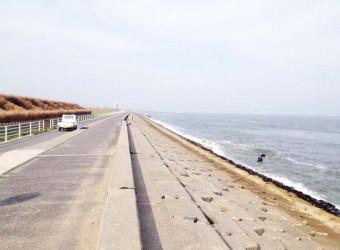 旭市付近の九十九里浜。護岸工事されて、昔の面影は無い。国は全部やるつもりだろうか?