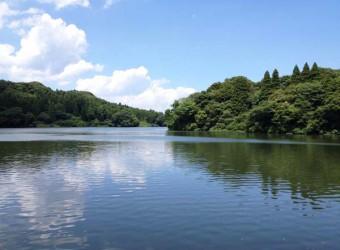 東金の雄蛇ヶ池。江戸時代に農業用貯水地として造られた。「房総の十和田湖」と言われるほど美しい。バス釣りでも有名。