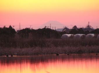 長生村本郷で見かけた富士山(その2)。まったく同じ場所、同じ日に撮った。夕暮れのシルエット富士。