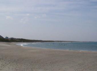 太東ビーチ。漁港の隣にある。弓なりの砂浜は、とても美しい。ここから九十九里浜が始まる。