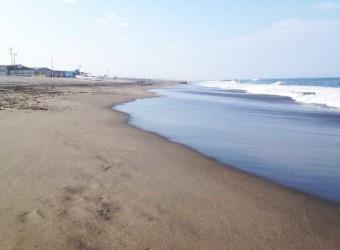 もうじき夏を迎えようという一松海水浴場。まだ人は少ない。