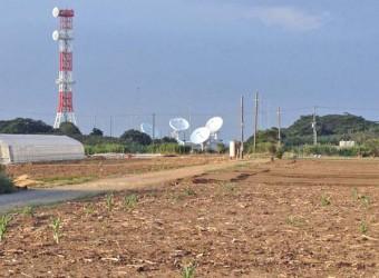 海上自衛隊飯岡受信所のパラボナアンテナ群。畑の中のシュールな光景。