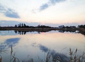 長生村本郷にある「大関堰」。元々このあたりは湿地帯だった。その名残りのようなもの。